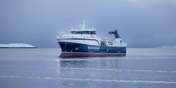Royal Greenlands skib Avataq. Arkivfoto: Royal Greenland