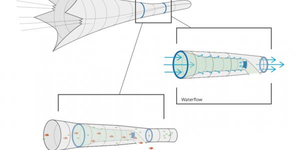 Excluderen er en videreudvikling af en anden slags excluder, som i de senere år har vist gode resultater med at minimere bifangst af bl.a. sild i sperlingfiskeriet.  Illustration: DPPO