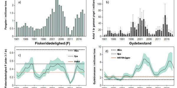 Figuren viser den historiske udvikling i blåhvillingfiskeriet og -bestanden i Nordøst Atlanten fra 1981 til 2019.  a) Fangster, b) Tilgange af 1 år gammel yngel, c) Fiskeridødelighed med ICES-referencepunkterne Flim, Fpa og FMSY, d) Gydebestanden med ICES-referencepunkterne Blim, Bpa og MSY Btrigger. De grønne områder omkring fiskeridødelighed i c) og gydebestand i d) angiver usikkerheden i modelberegningerne. Kilde: ICES (Det Internationale Havforskningsråd).